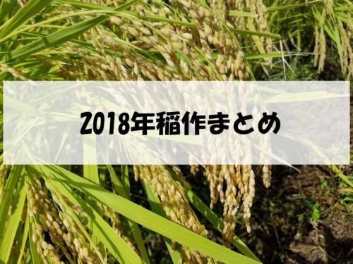 2018年の稲作はどうだった?今年の稲作を振り返ります。
