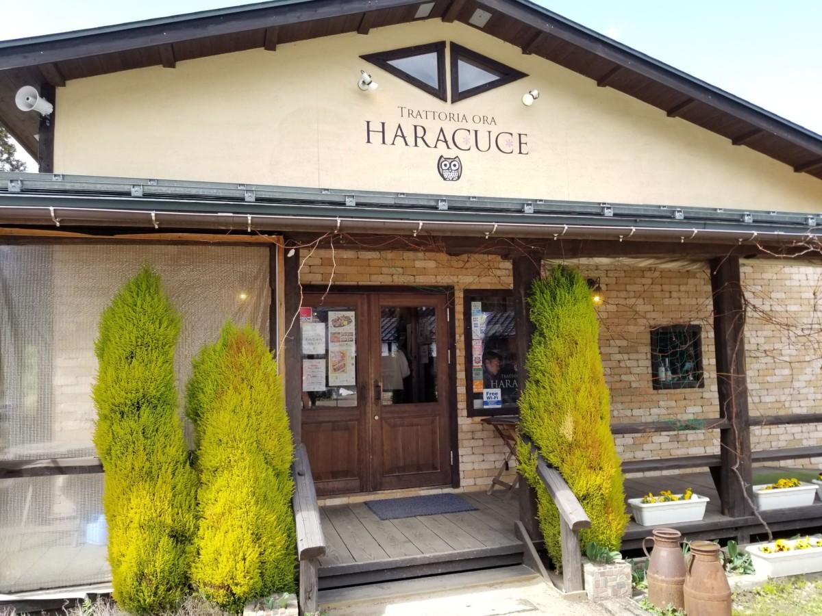 【新潟県新発田市】HARACUCE(ハラクチェ)【イタリアン】