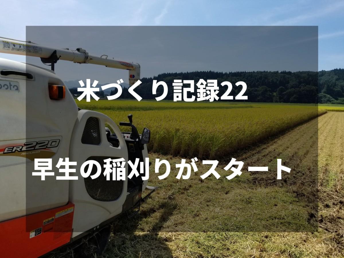 早生の稲刈りがスタート|2019米づくり記録22