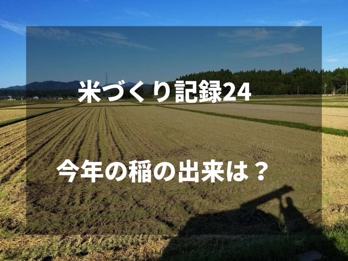 今年の稲の出来は?|2019米づくり記録24