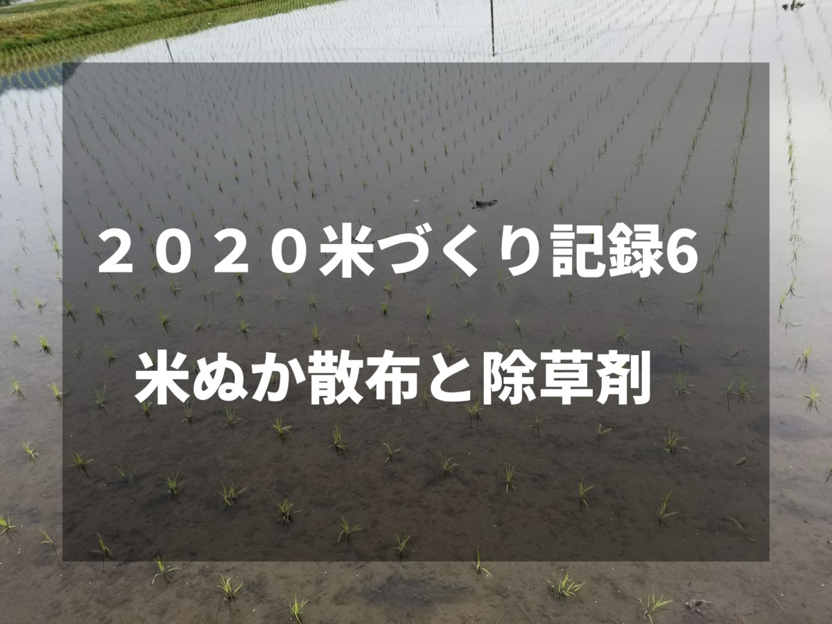 米ぬか散布と除草剤|2020米づくり記録6