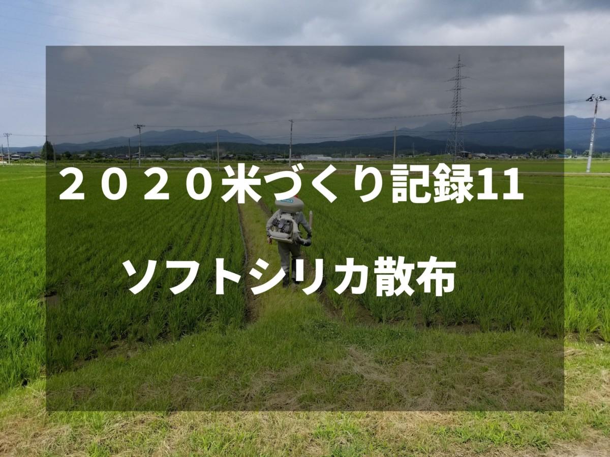 ソフトシリカ散布|2020米づくり記録11