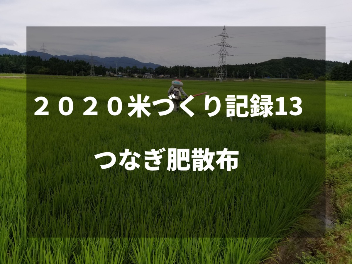 つなぎ肥散布|2020米づくり記録13