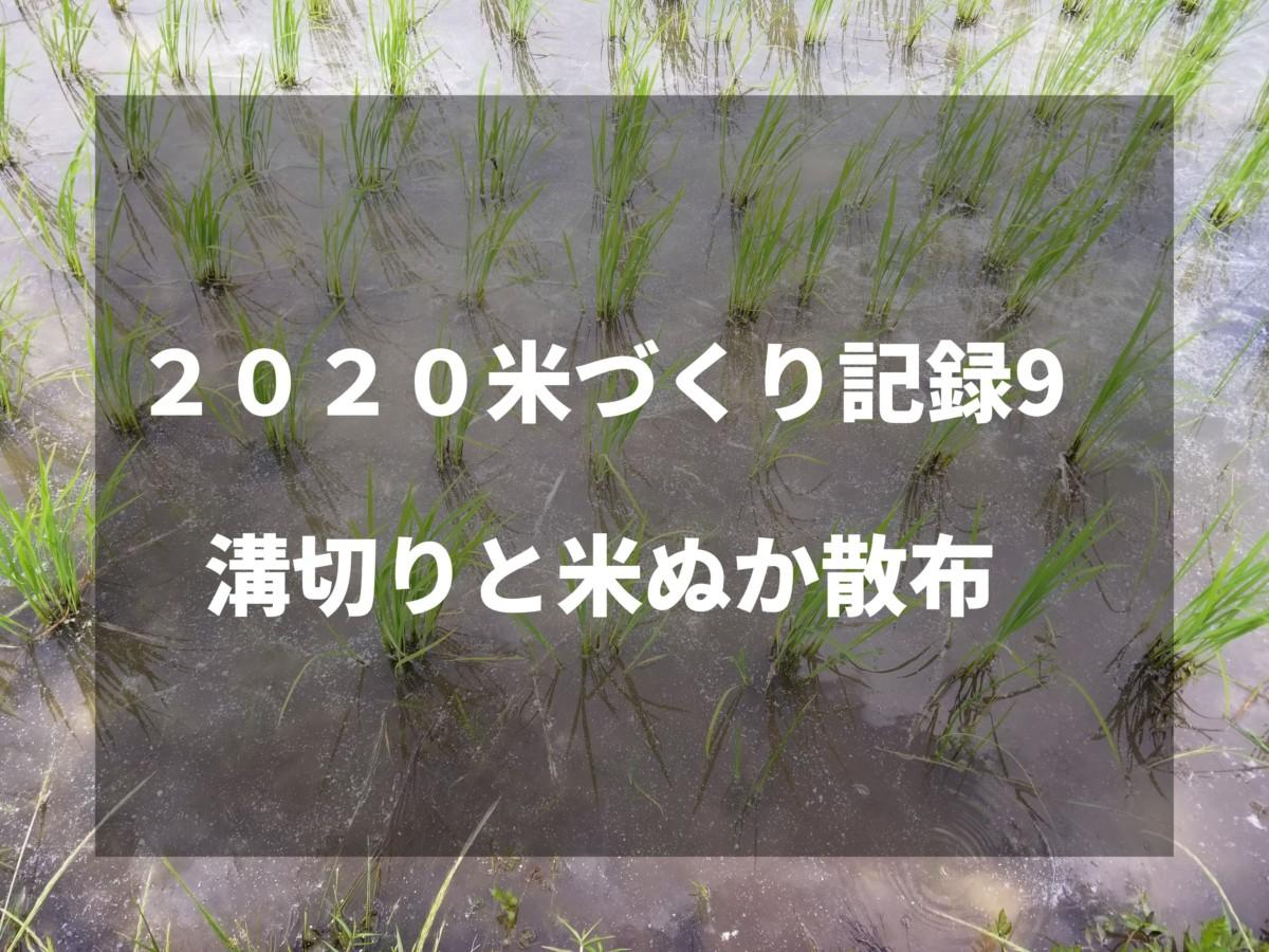 溝切りと米ぬか散布|2020米づくり記録9