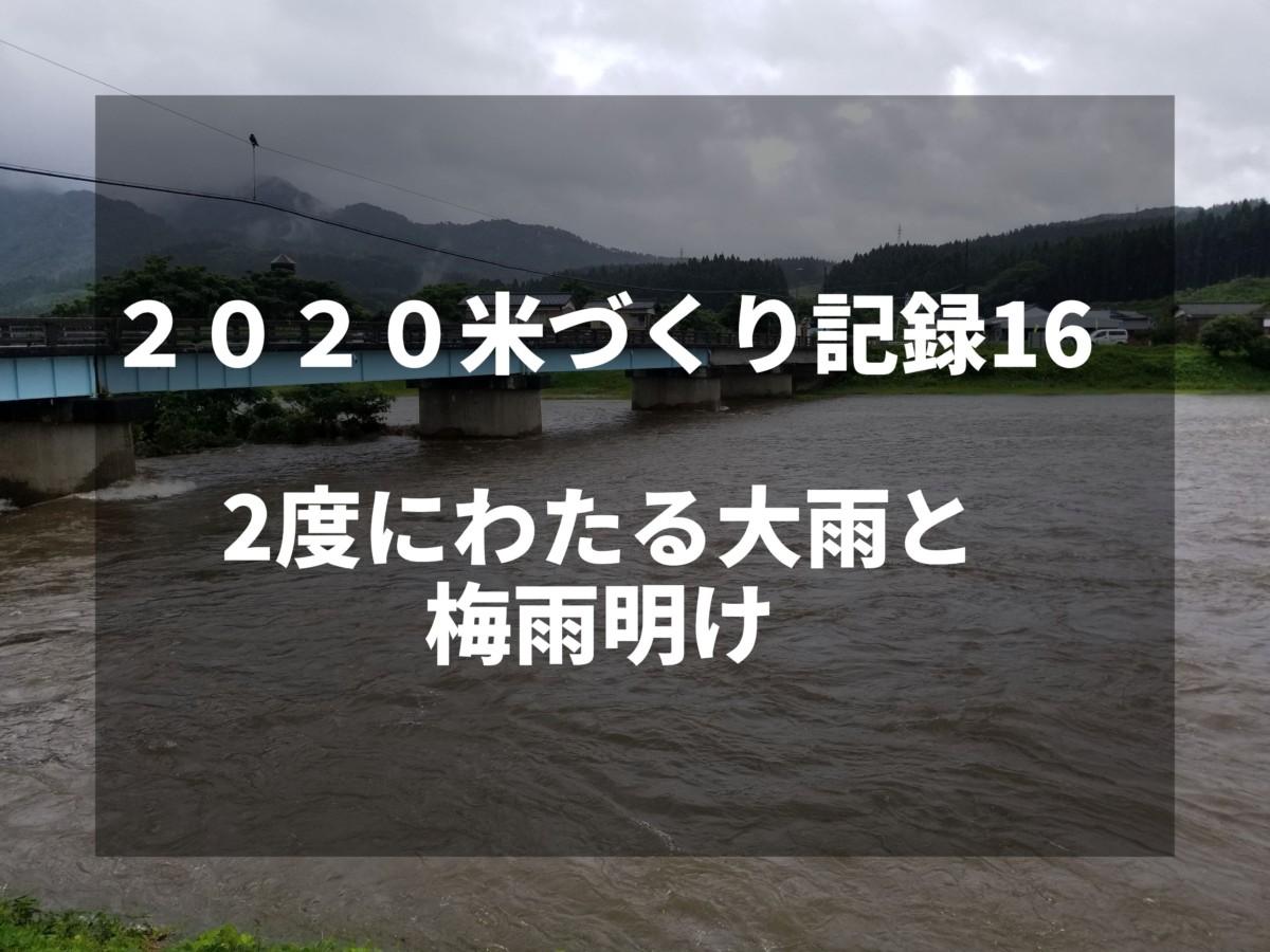 2度にわたる大雨と梅雨明け|2020米づくり記録16